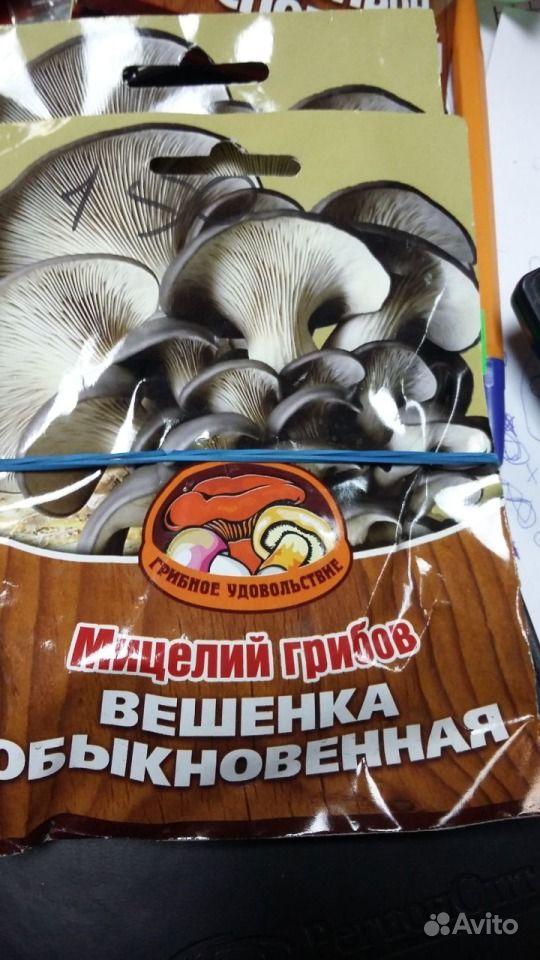 Семена грибов купить на Зозу.ру - фотография № 2