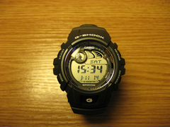 часы Casio G-Shock G-2900 - presidentwatchesru