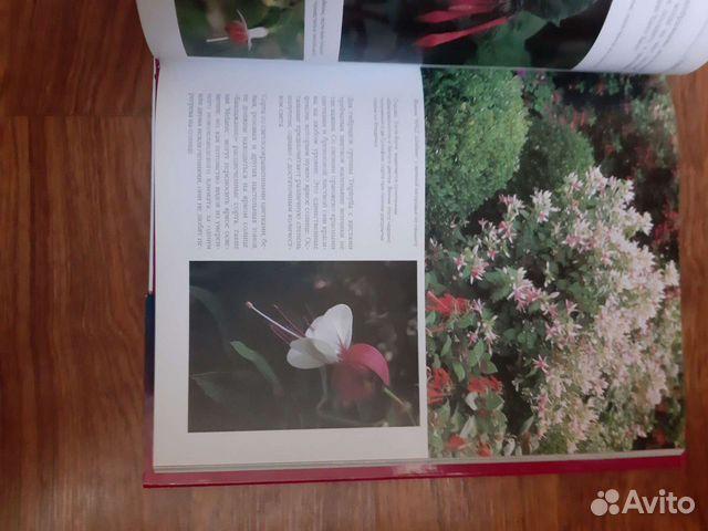 Энциклопедия цветов Фуксии  89044003557 купить 6