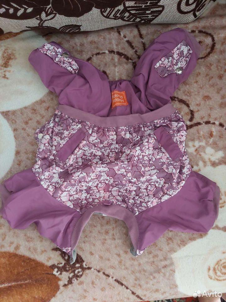 Одежда на собачку  89527467196 купить 8