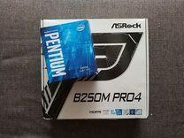 Материнская плата AsRock B250M PRO 4 + G4560