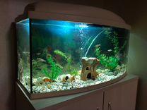 Продам аквариум 110 л