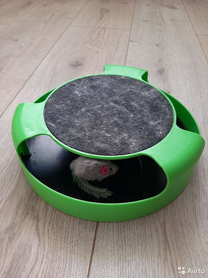 Игрушка для котят, бегающая мышка  89787325895 купить 1